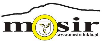 logo_mosir_bez_obwodki_small